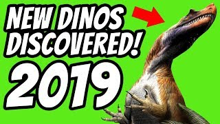 NEW DINO DISCOVERED 2019!