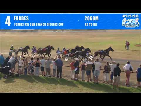forbes---25/04/2018---race-4---forbes-rsl-sub-branch-diggers-cup