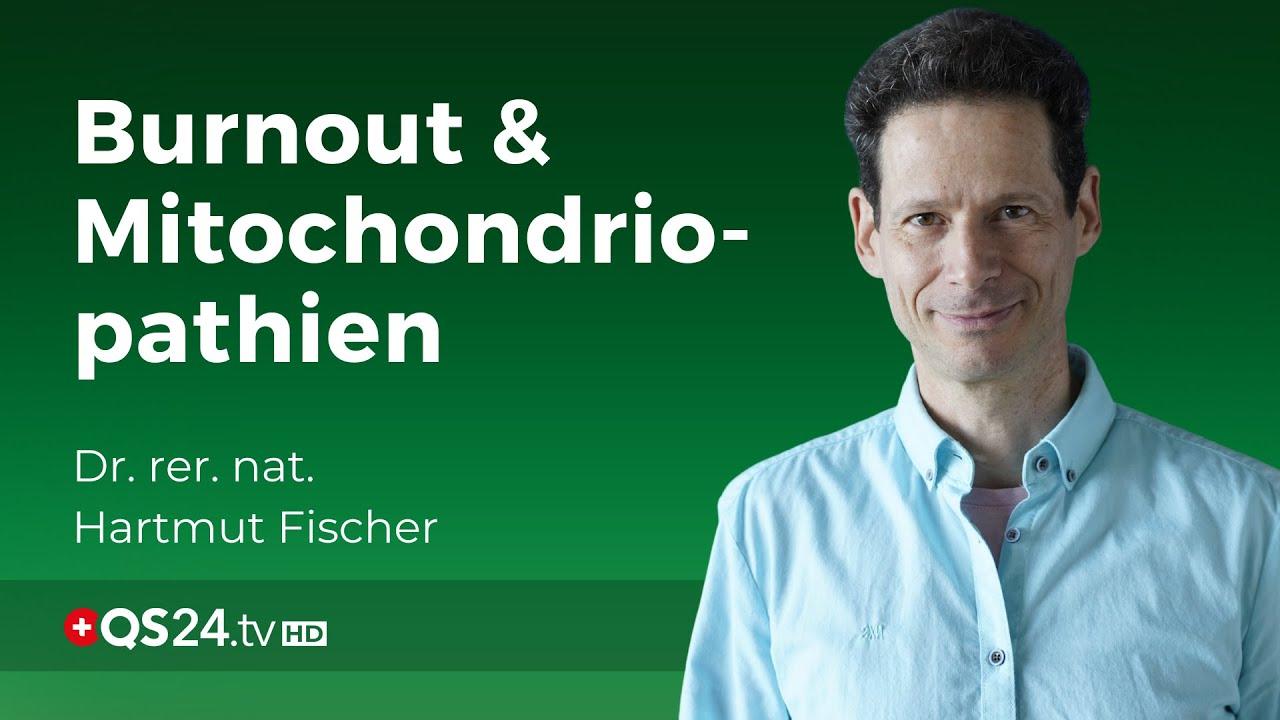 Burnout: Mitochondriopathien mit DMSO behandeln   Dr. rer. nat. Hartmut Fischer   QS24