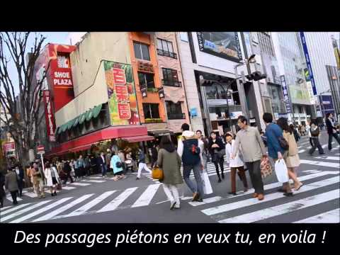 Vlog Japan Tokyo 3 : shibuya, tokyo metropolitan building & Shinjuku