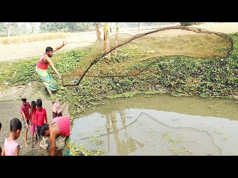 Cast Net For Fishing in Village Small Canal। Village Fishing Tv