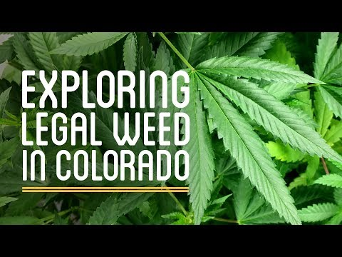 How to Sell Weed...Legally: Exploring the Legal Pot Industry in Colorado