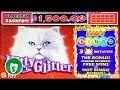 ⭐️ NEW -  Kitty Glitter Hot Bingo slot machine, bonus