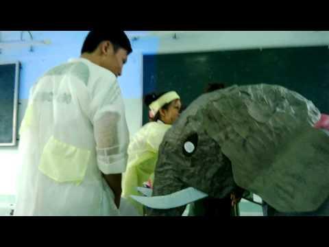 truyện ngụ ngôn thầy bói xem voi