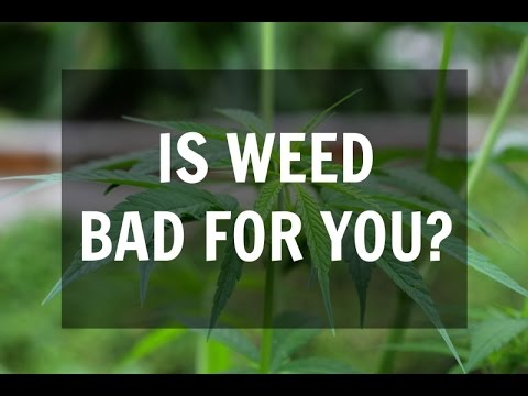 Is Smoking Weed Bad For You? (The Health Effects of Marijuana)