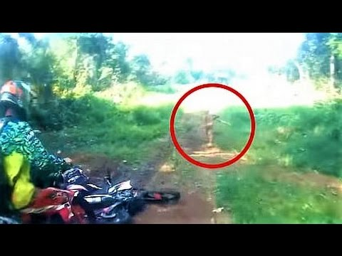 Thumbnail: 10 Strangest Cryptids from Indonesia