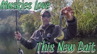 Almost Got Pulled in by a Musky! || Introducing Eastfield Baits