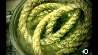 O Corredor Da Morte (Documentário  Dublado)