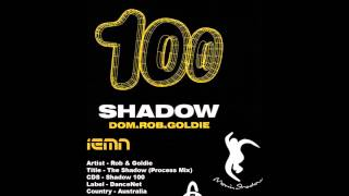 (((IEMN))) Rob & Goldie - The Shadow (Process Mix) - Moving Shadow 1997 - Drum & Bass