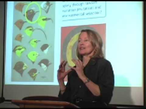 Zann Gill-NASA-Microbes-Mind4