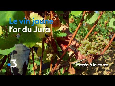 Le vin jaune, l'or du Jura  - Météo à la carte
