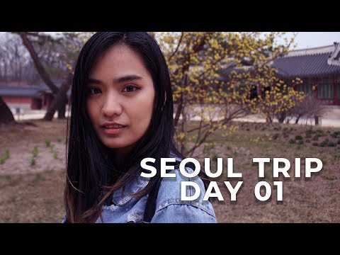 SEOUL TRIP DAY 01 MONTAGE | TRAVEL VLOG - PALACES AND N. SEOUL TOWER | DIY TRAVEL KOREA