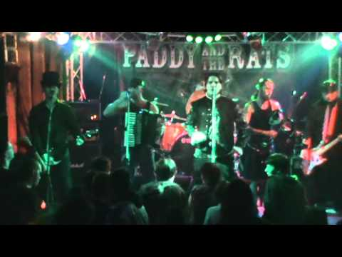 Paddy and the Rats-Pack of  rats (new song!)