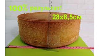 СЕКРЕТ пышного БОЛЬШОГО 28х8см бисквита без разрыхлителя ПОДРОБНО все нюансы от ТОРТЫ и КУЛИНАРИЯ