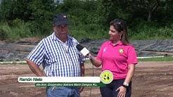 Coop Marin Campos