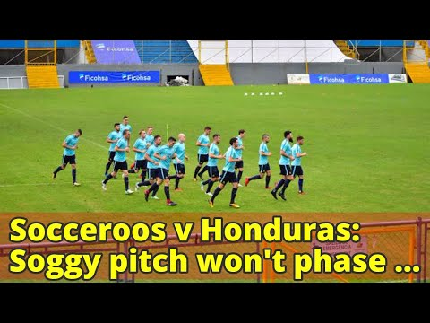 Socceroos v Honduras: Soggy pitch won't phase Australia, says Postecoglou