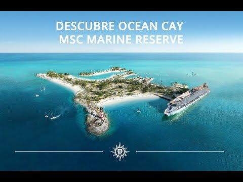 Descubre Ocean Cay – MSC Marine Reserve