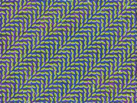 Animal Collective - Taste