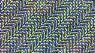 Watch Animal Collective Taste video