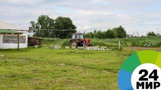 Дачные войны: садоводы из Подмосковья 10 лет спорят из-за дороги - МИР 24