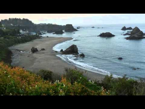 Redwood National Park travel guides California, United States