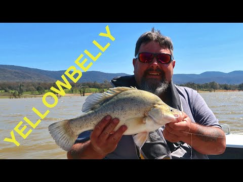 Mixed Bag Fishing At Lake Nillahcootie