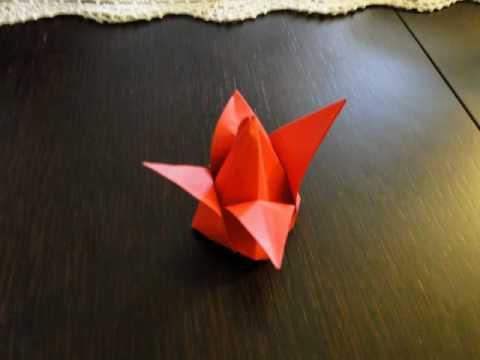 origami tulipan doovi