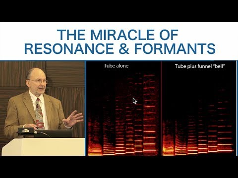 Eric Heller: The Miracle of Resonance & Formants // ICSV 2017