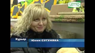 """новости Новороссийск: открытие гипермаркета товаров для растений и животных """"LETTO"""""""