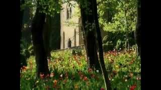 02 La primavera dei tulipani nel parco Sigurtà - foto 2011 di Claudio Gobbetti