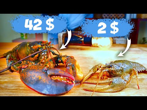 Crayfish For 2$ Or Lobster For 42$? Cooking Battle