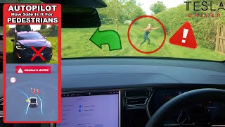 Tesla AutoPilot vs CRAZY People On The Road! - will it stop? (SPOILER. ONLY SOMETIMES!?)