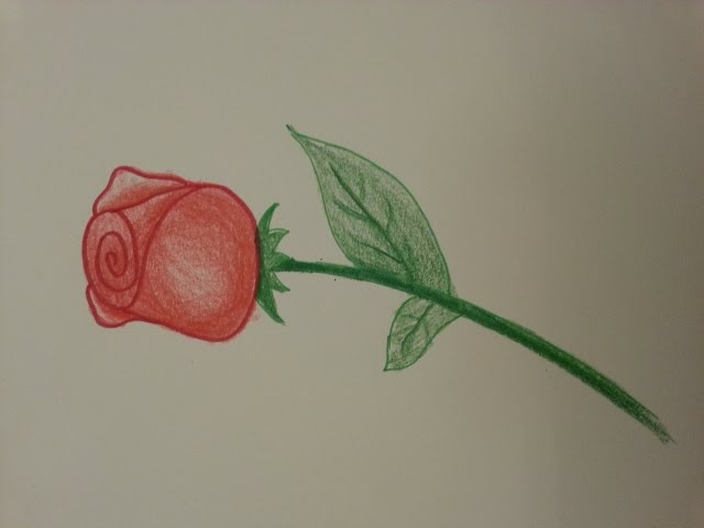 Kolay Ve Hizli Tomurcuk Gul Cizimi How To Draw A Rose Youtube