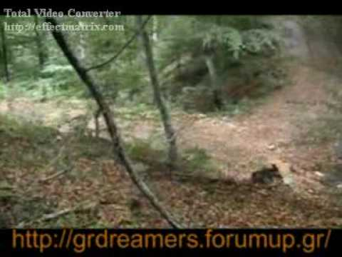 gourounes elatoxori 2 (2006)