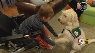 Cincinnati boy with Duchenne muscular dystrophy faces uncertainty with man's best friend at his side