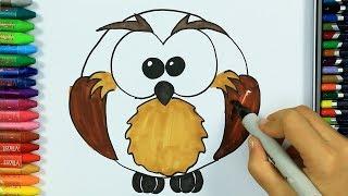 Colori 🍀| Come disegnare gufo | Colorare | Come colorare per bambini | Disegnare e colorare