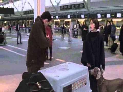 Best In Show - Airport Scene.wmv