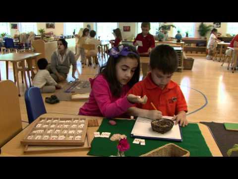 Montessori Institute of Broward School Official Video