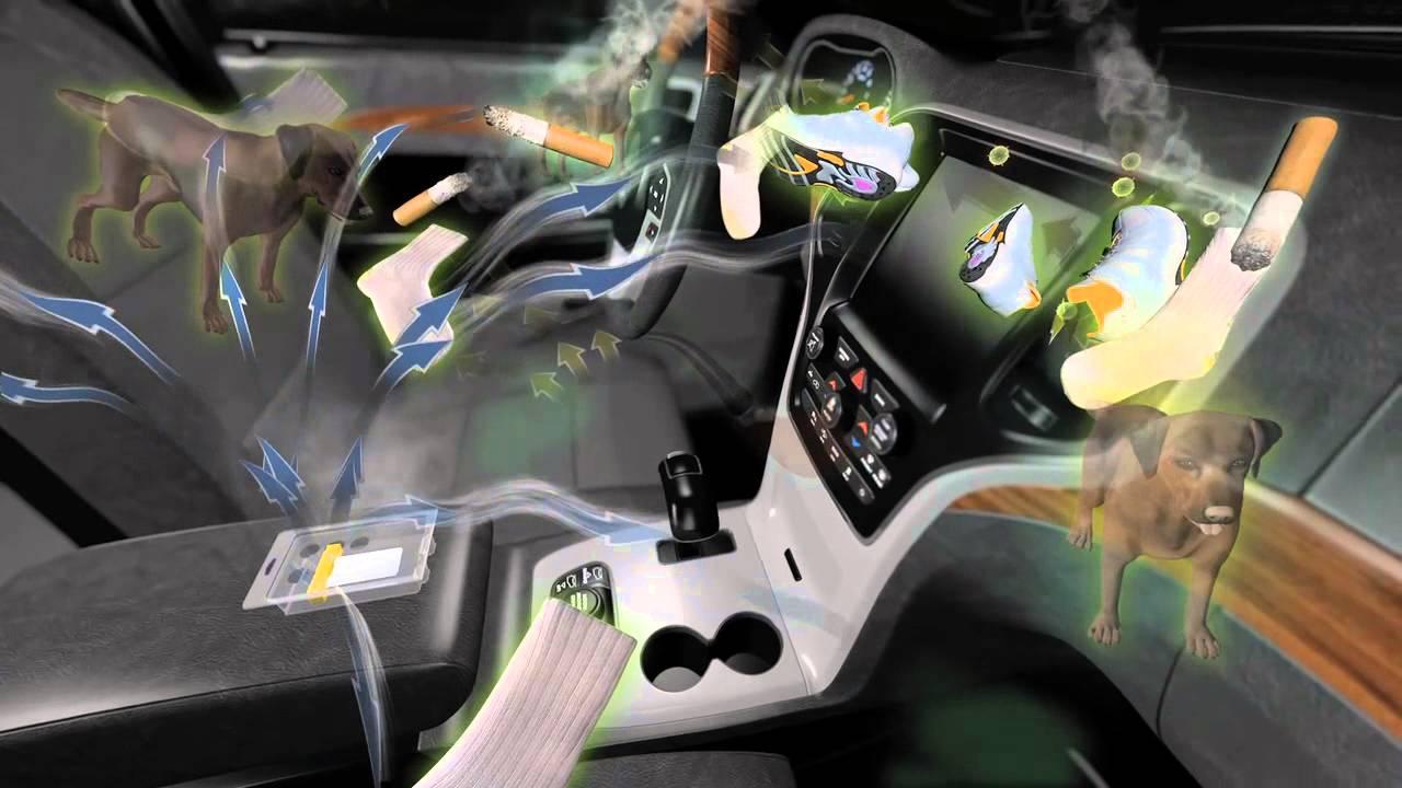 Car interior odor eliminator - Star Brite Auto Odor Eliminator Clo2 Deodorizing Fast Release System
