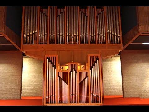 Henk Verhoef (organ) at the Couperin-organ 30 July 2016 in Amsterdam