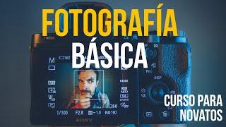 FOTOGRAFÍA BÁSICA  Curso para principiantes!