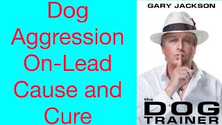 Quick Tip 4 Dog Aggression On Lead Cause And Cure
