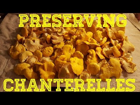 How to cook pickled chanterelles