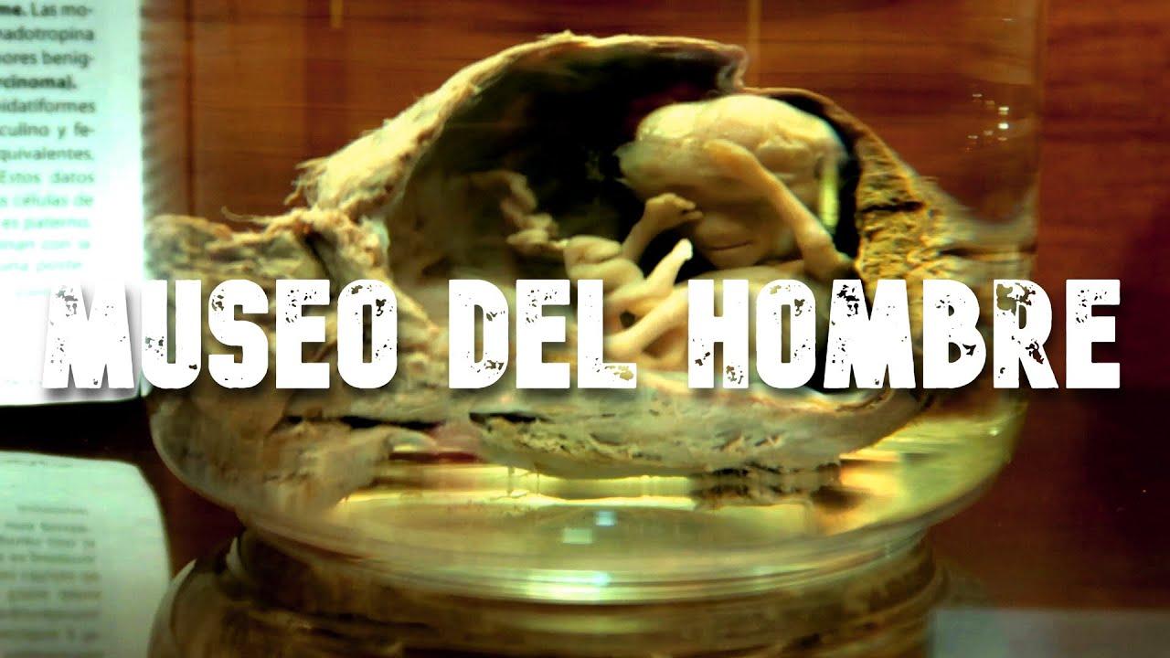 Un museo ATERRADOR | El museo del HOMBRE