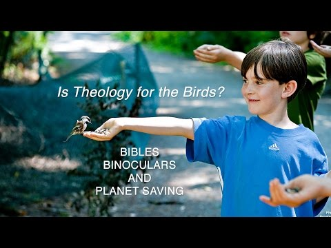 Is Theology for the Birds?