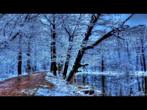 Vivaldi 4 Seasons Winter- (David Garrett )