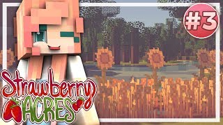 Strawberry Acres | EP.3 |