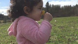 الحلقة الأربعون: ولادة ليلى وعودة الماعز