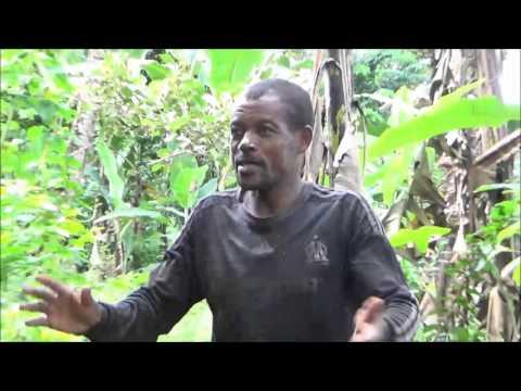 NDOMSOMO NO WAKATI  - Agriculture à Tsidjé Avec Ibrahim Ahmada M'madi  (Mwema)