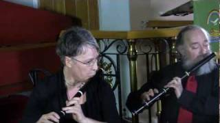 Bach: Allegro ma non presto (Brooklyn Baroque and Courtney Westcott)